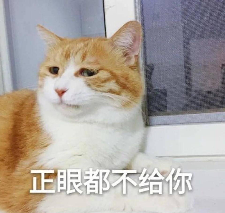 王思聪评论罗志祥究竟怎么回事?王思聪评论罗志祥令人震惊(图27)