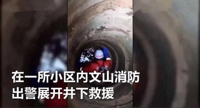 原创 二哈被困深井,消防员下去救援被乖乖抱住,网友:是自己跳下去的