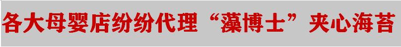 """网红""""藻博士""""夹心海苔诚招代理批发商"""