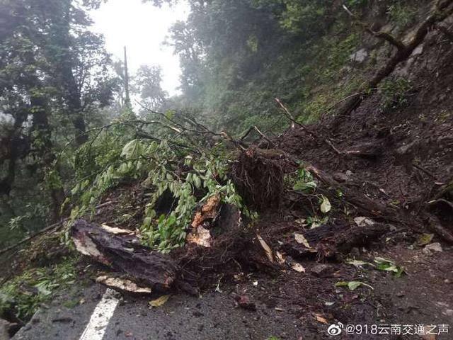 暴雨来袭!怒江贡山多条道路交通中断,丙中洛暂缓游客进入