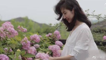 原创 总裁夫人紫色绣球花透露花语,张大奕什么都能打版,唯独香水不行