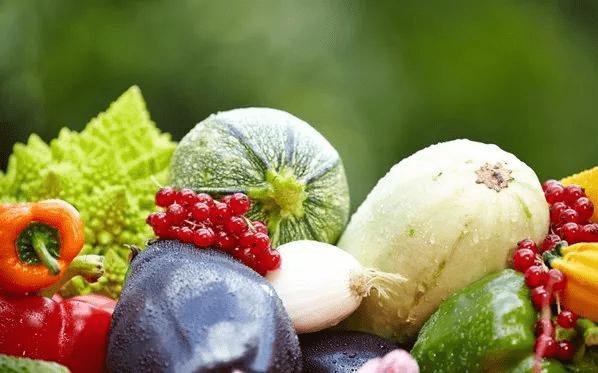 农产品合格证制度助推企业健康快速发展