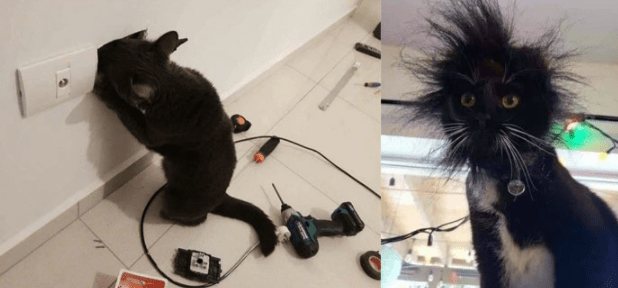 好奇害死猫啊