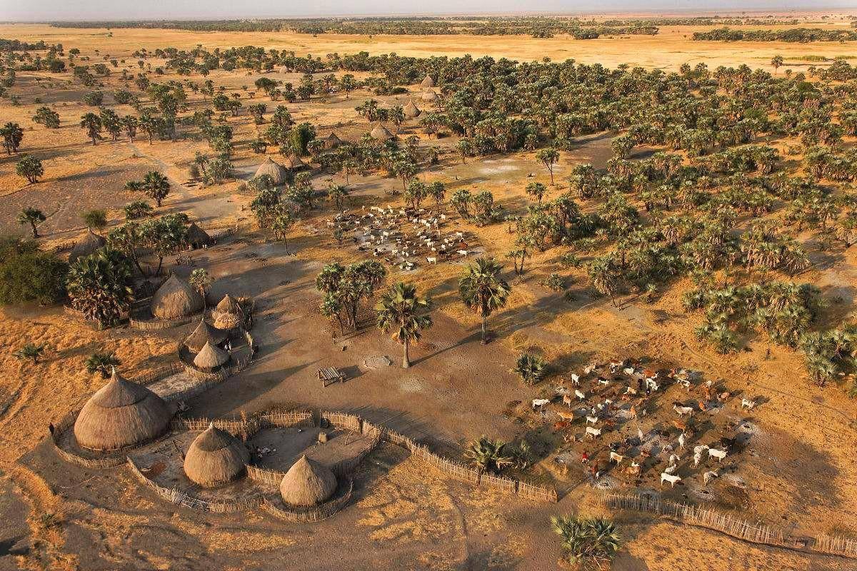 苏丹的经济总量是多少_苏丹草