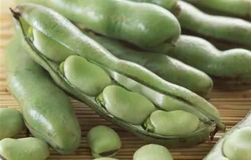 倩狐:12 种「越吃越瘦」的食物排行榜,第一名99%的人都猜不到! 减肥方法 第12张