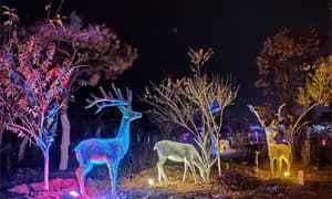 文旅照明:主题公园景观亮化这样做才能吸引人?