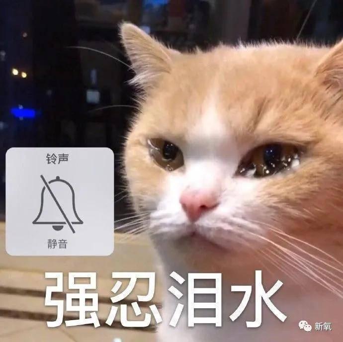 原创             40岁秦岚是靠吃高光保养的吗?!整张脸透亮得像玻璃珠...