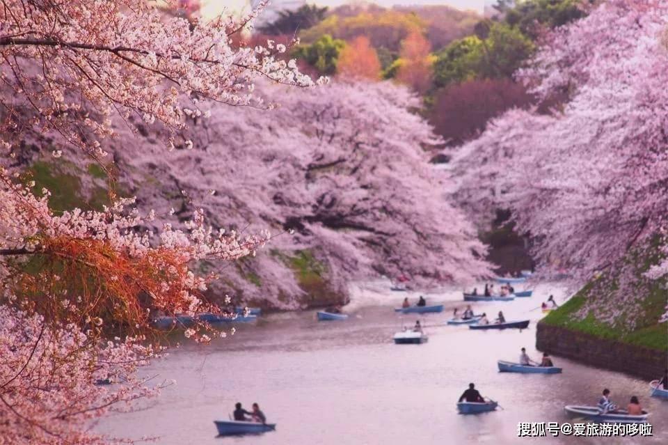 谁说日本只有富士山,这12处美景直击心灵,第一眼就让人惊艳!
