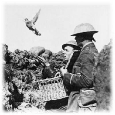 英军的奇葩武器装备:移动鸽笼车,坦克也搭载