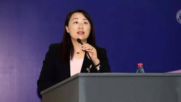 冯俏彬:全球已有4个国家开征数字税,中国征数字税要从长计议