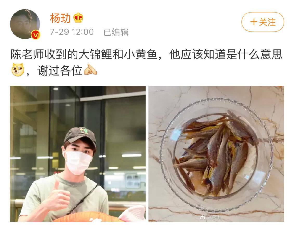 """杨玏机场被送小鱼干 逗趣称替""""陈老师""""谢过各位"""