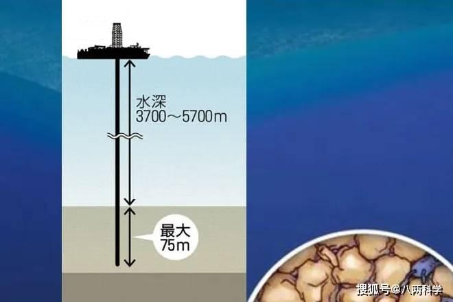 """科学家成功""""唤醒""""海底1亿岁老细菌 潘朵拉魔盒?"""