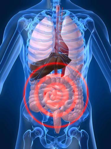 肺不好难长寿!常吃3种食物,清除毒素,肺一天比一天强壮