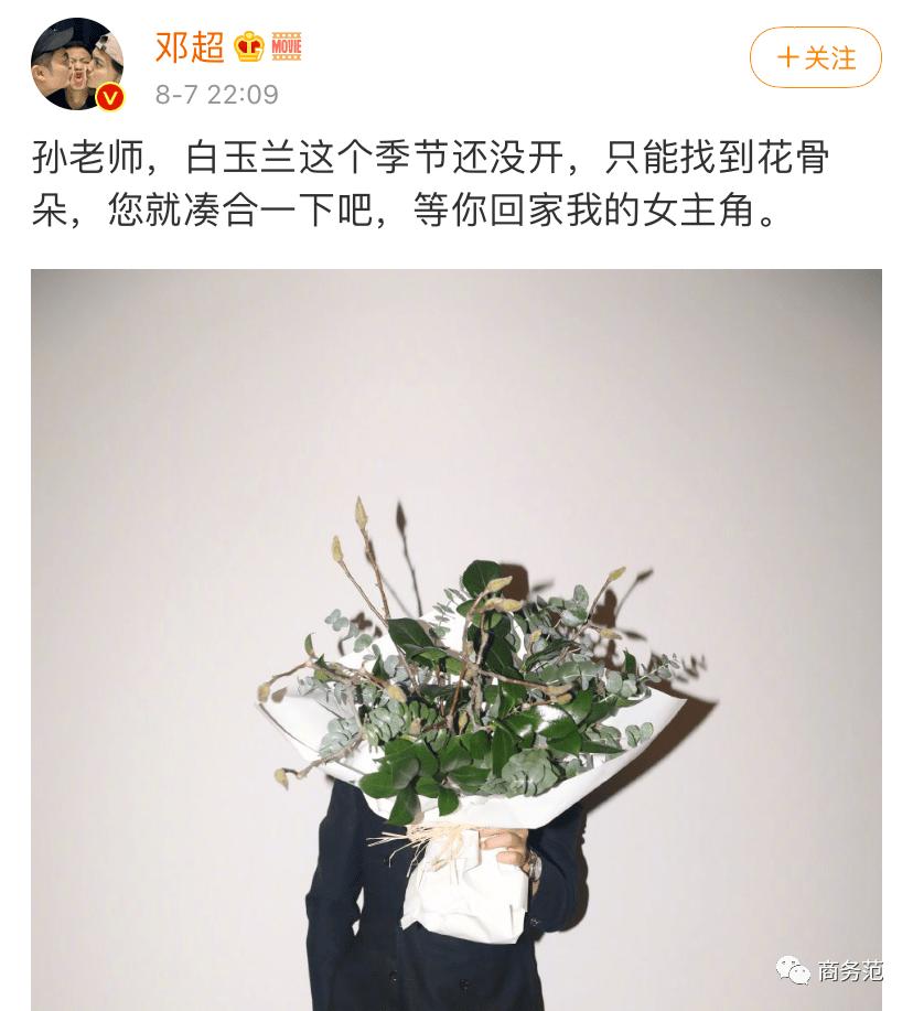 闫妮戴宝格丽、陶虹选伯爵、刘涛爱萧邦…姐姐们红毯就是珠宝大比拼!