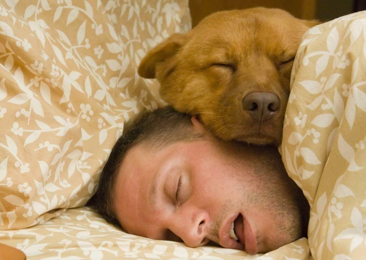 Reader's Digest:睡不够也是病!自查十法了解一下