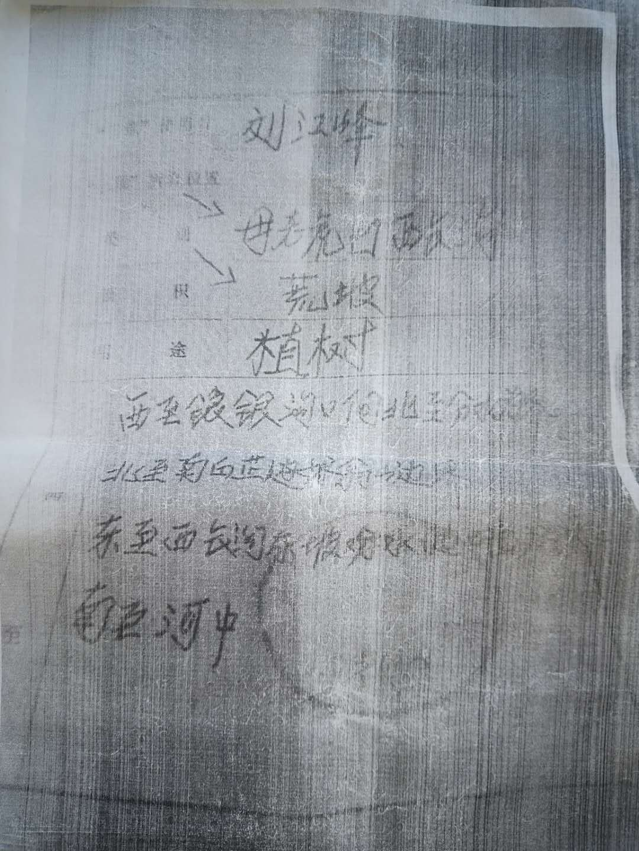 """内邱:荒山承包协议与""""三荒开发使用证""""孰真孰假?"""