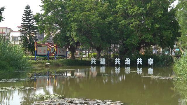 江门高新区(江海区):党建引领农村社区治理