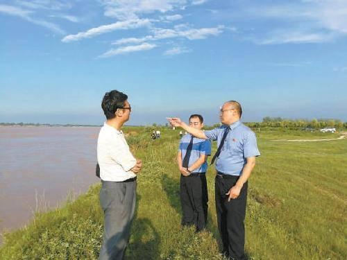 [迈向我们的小康生活]黄河湿地成了鸟类的天堂