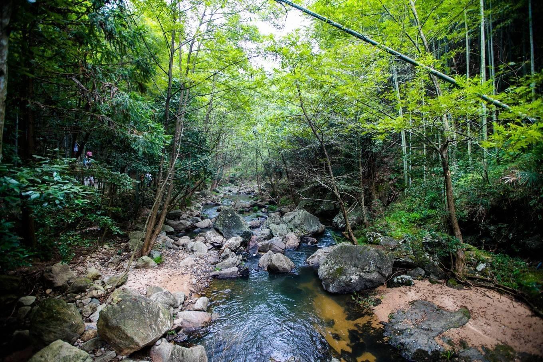 天柱山大峡谷,青山绿水奇石飞瀑,夏季清凉避暑好去处