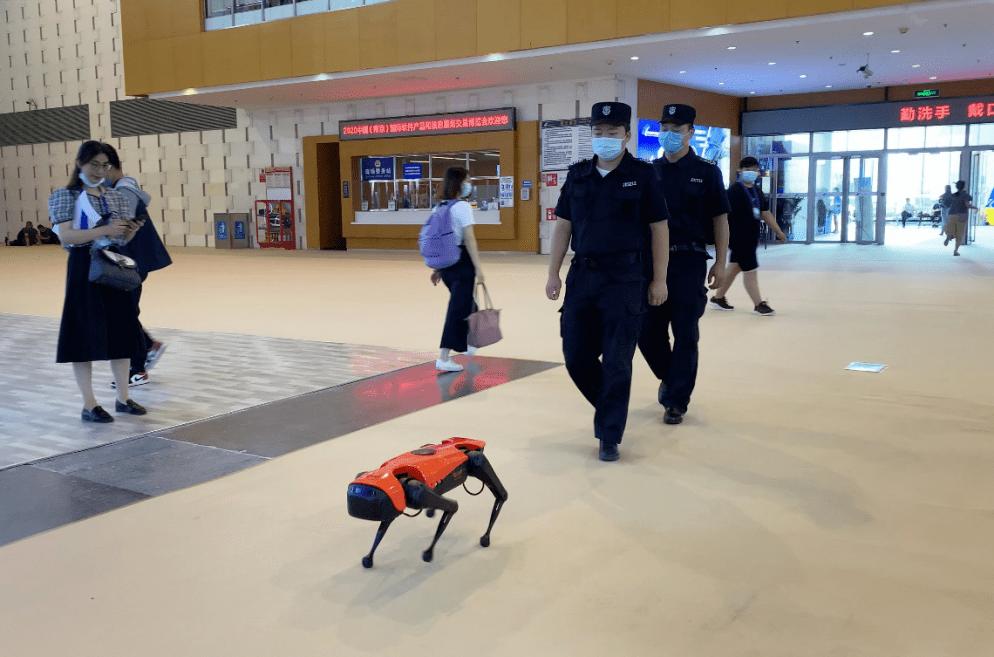 36V直流减速电机,四足机器人亮相2020年南京软博会呈现未来生活应用场景_软件