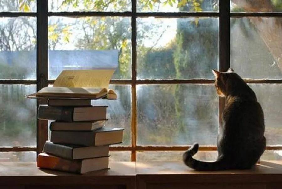 读懂自己,感悟人生