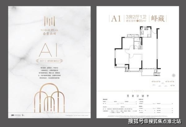 <strong>[开发商]于1995年在广州成立,2007年在香港</strong>