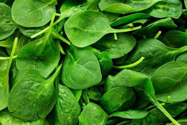 """天然的""""血管吸尘器""""找到了,3种菜每天换着吃,清理血管垃圾,恢复血管弹性"""
