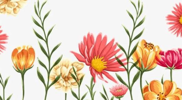 中国最受欢迎的市花,前十五位有哪些,你猜对了吗?