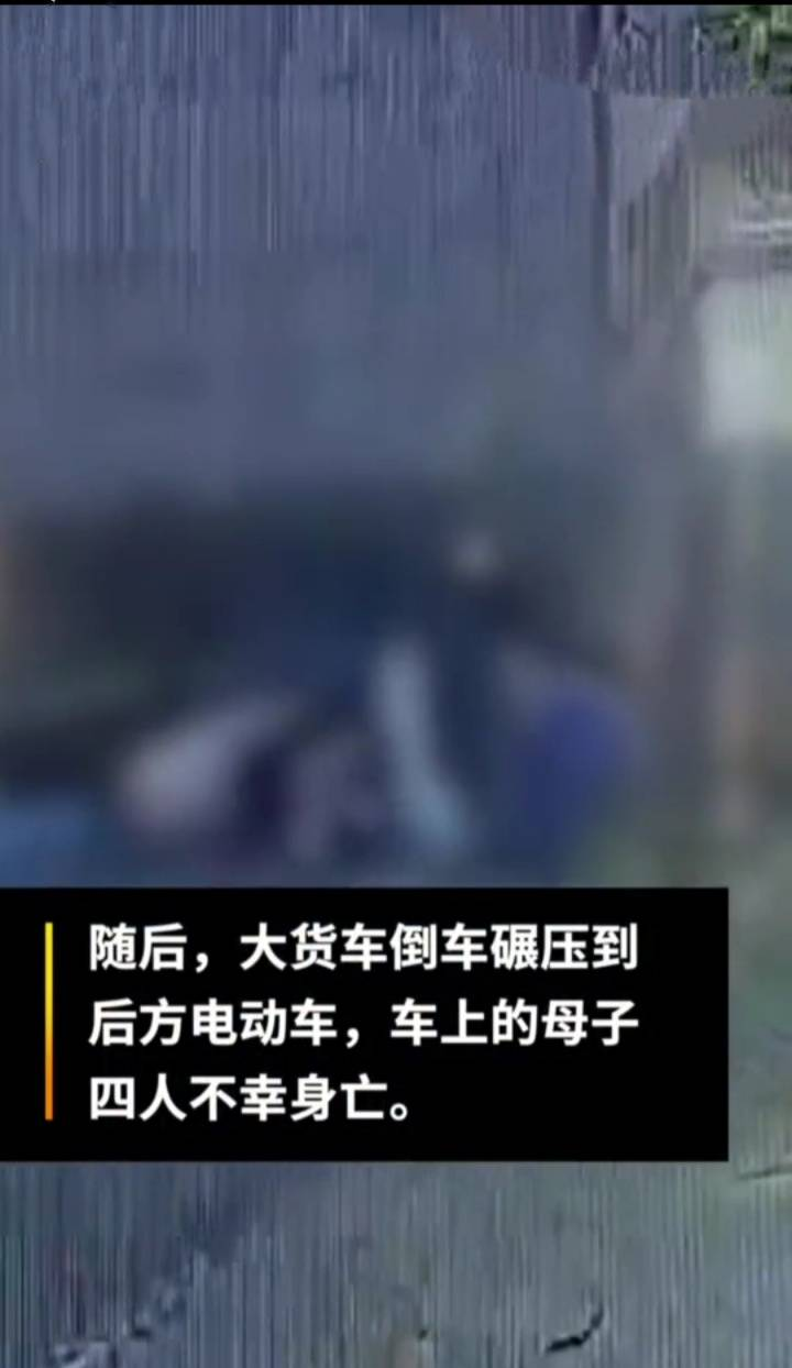 广西博白路边停的货车突然倒车 车后四母
