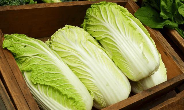 买大白菜时 选择绿叶还是