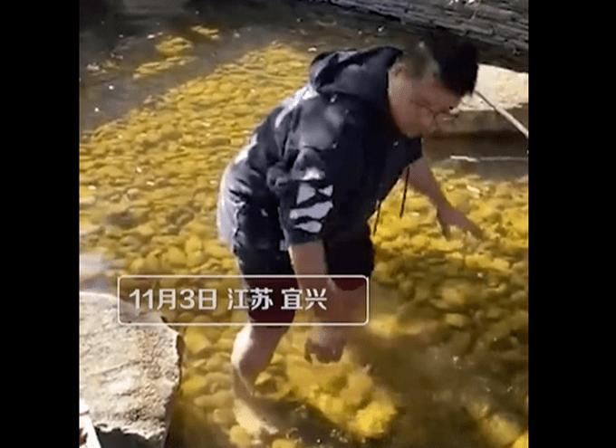 爸爸赤脚下水捞宝宝扔的玻璃渣