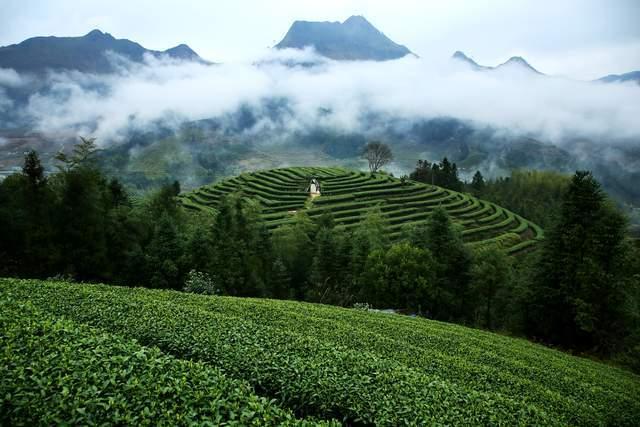 """原创             来自""""中国名茶之乡"""",古朴而美丽的福建小城,大自然的馈赠"""