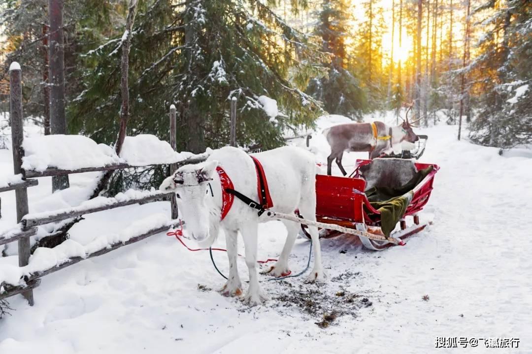 圣诞去哪玩?全球最美圣诞旅游目的地,如童话世界一般美!