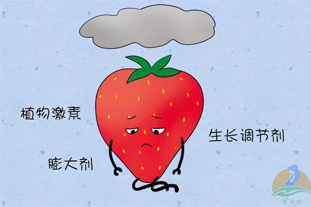 奶奶拒绝给孩子买草莓,理由不是农药也不是激素,有些意想不到  第6张