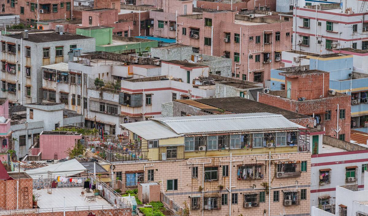 深圳首区发布学位申请预警!租房需提供支付截图、将上门核查  第4张