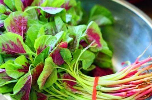 聪明的人爱吃3种食物,排毒养颜,延缓衰老,有益健康