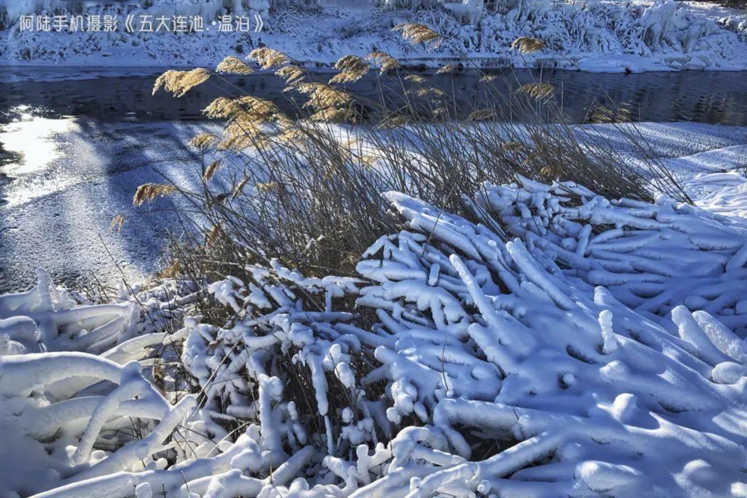 不远万里打卡五大连池的温泊,当看到不冻河与雾凇,觉得一切都值