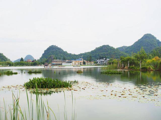 云南这个盛满鱼虾的湖泊,荷花遍地开,最全的两日游攻略看过来