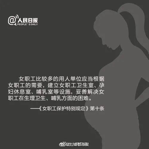 女子怀孕七个月,被公司称没产假劝退?网友热议