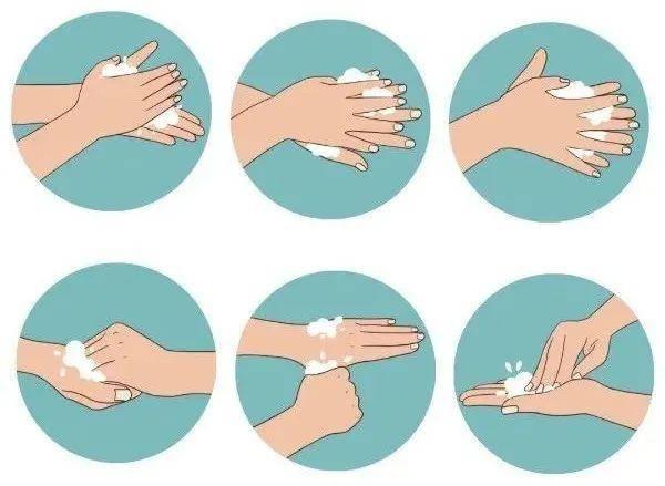 图二   七步洗手法图片