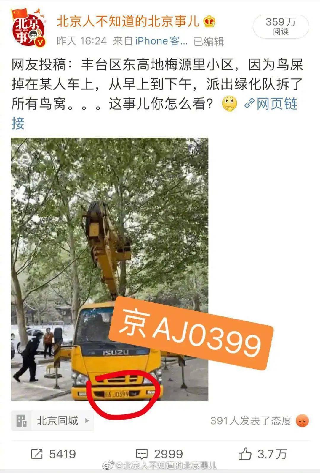 救救北京的那些鸟吧!它们快要笑死了……