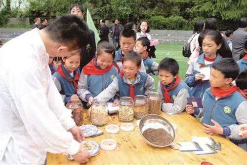 中医药文化传承+劳动实践诠释新时代劳动教育