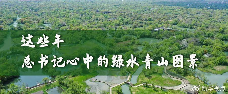 这些年,总书记心中的绿水青山图景