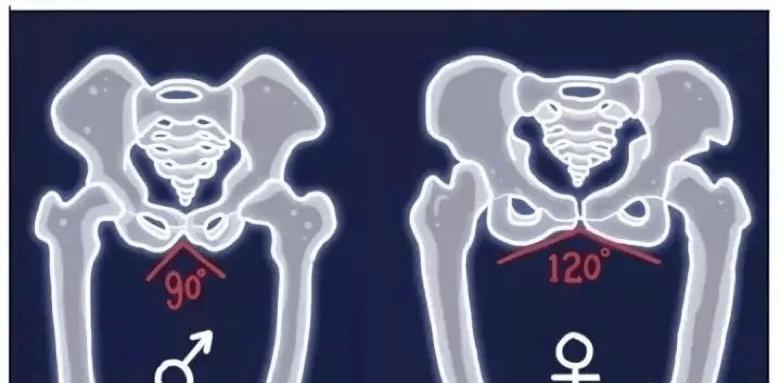 为什么男人的腿总是合不拢?真实原因竟是……