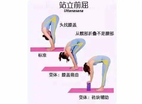 初学者一定要知道,这25 个常见瑜伽动作细节必须牢记 减肥窍门 第4张