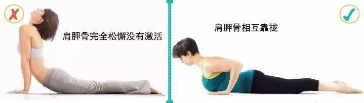 练瑜伽,一定要学会激活启动肩胛骨!_运动 高级健身 第6张