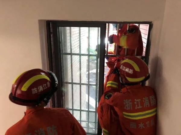 吓坏!浙江一户人家连续两天飞进蝙蝠,消防员到现场一看不得了…