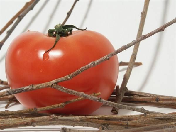西红柿和此物一起吃,疏通血管,清洁子宫