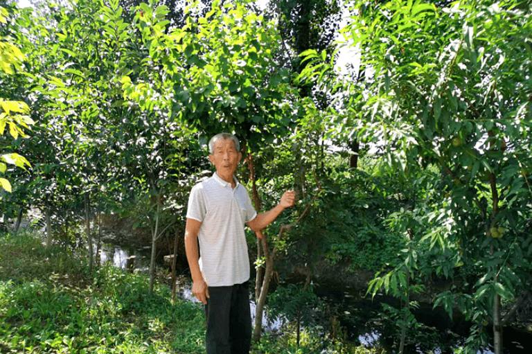遂平:七旬老人勇救落水儿童获称赞