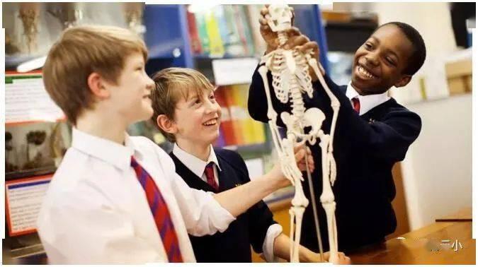 孩子有英国留学计划,这些预备学校需要提前了解!_中欧新闻_欧洲中文网
